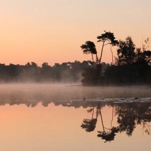 ochtend in Oisterwijk